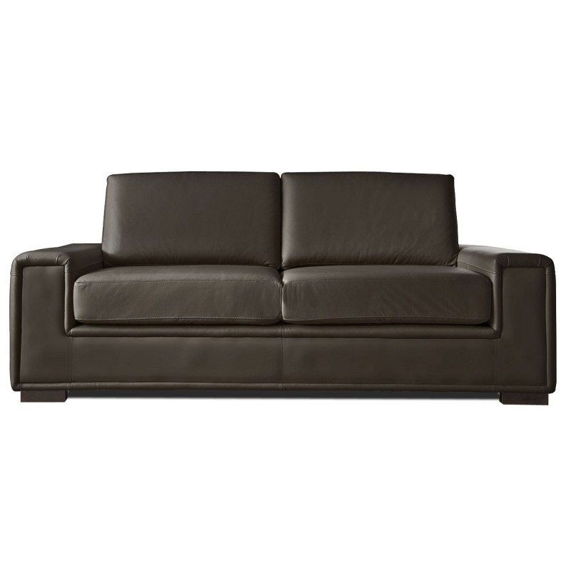 canape cuir chocolat 2 places rio mister canap. Black Bedroom Furniture Sets. Home Design Ideas